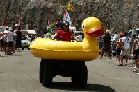 Un canard dans la caravane : Aujourd'hui en France