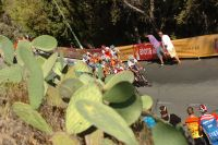 Le peloton du Tour d'Espagne 2010