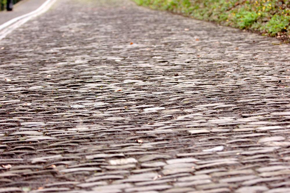 Les pavés du Mur de Grammont