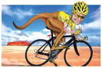 En route pour la saison 2012 !