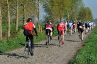 Il faut favorier le haut du pavé sur Paris-Roubaix