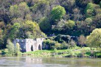 Le peloton le long de la Loire