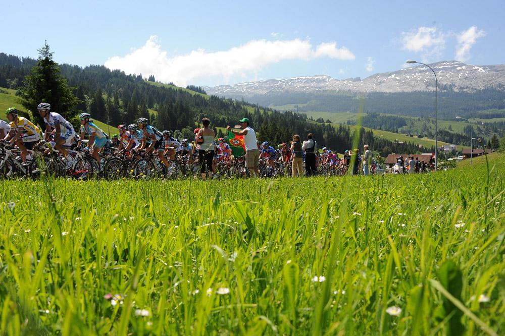 Le peloton du Tour de Suisse