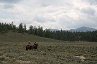 Des cowboys à proximité du passage de la course