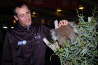 Sandy Casar fasciné par un koala