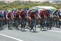 Les BMC protègent le maillot de Martin Kholer