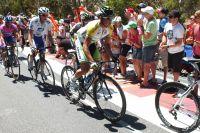 Simon Gerrans attend son heure dans la montée du Mont Willunga