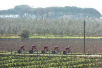 Les BMC se fraient un passage entre les vignes toscanes