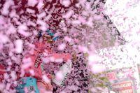 Pluie de confettis pour Vincenzo Nibali