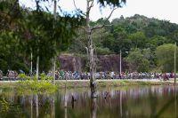 Paysage sauvage sur le Tour de Langkawi
