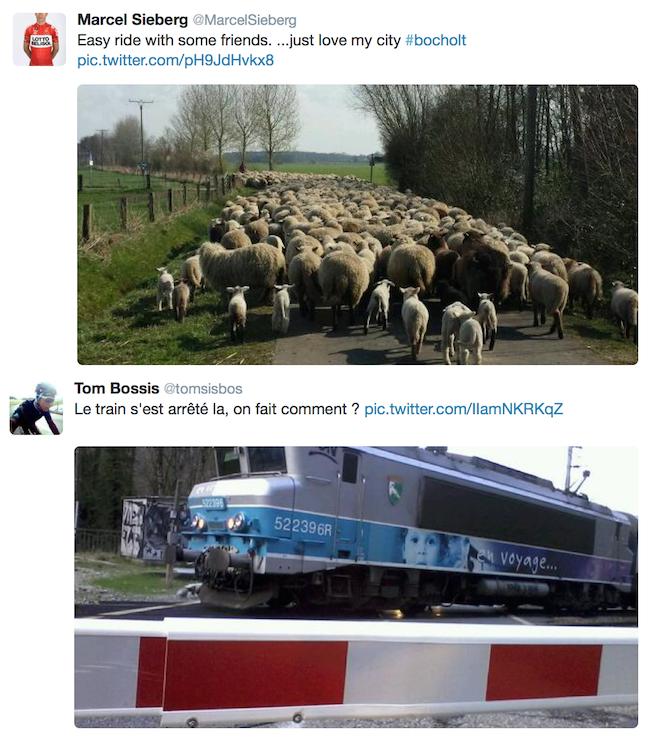 zap tweet 31.03.2014 2