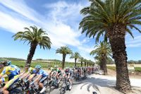 Le peloton du Tour Down Under