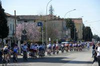 Le peloton de la Semaine Internationale Coppi-Bartali