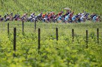 Le peloton du Giro en Emilie-Romagne