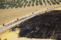 A travers les terres brûlées de l'Andalousie