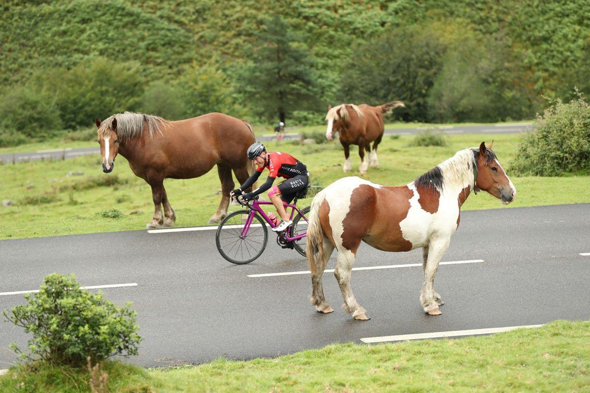 Slalom entre chevaux sur le Haute Route Pyrénées