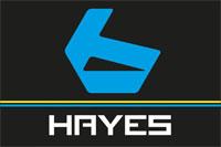 équipe Bergamont Hayes Factory Team, ©