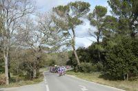 Le peloton du GP La Marseillaise