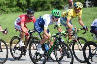 Nacer Bouhanni dans la roue d'Alberto Contador