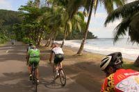 La Ronde Tahitienne roule sous les cocotiers