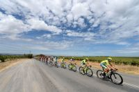 Le peloton du Tour Down Under conduit par les Tinkoff