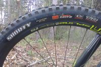 Test des pneus Maxxis Shorty