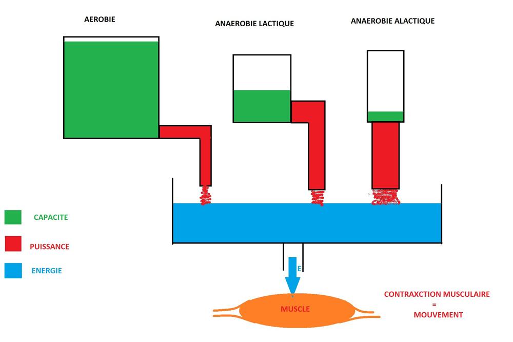Trois réservoirs distincts