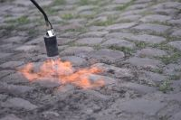 On brûle l'herbe des pavés d'Arenberg