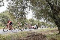 Retour sur... la 6ème étape du Giro