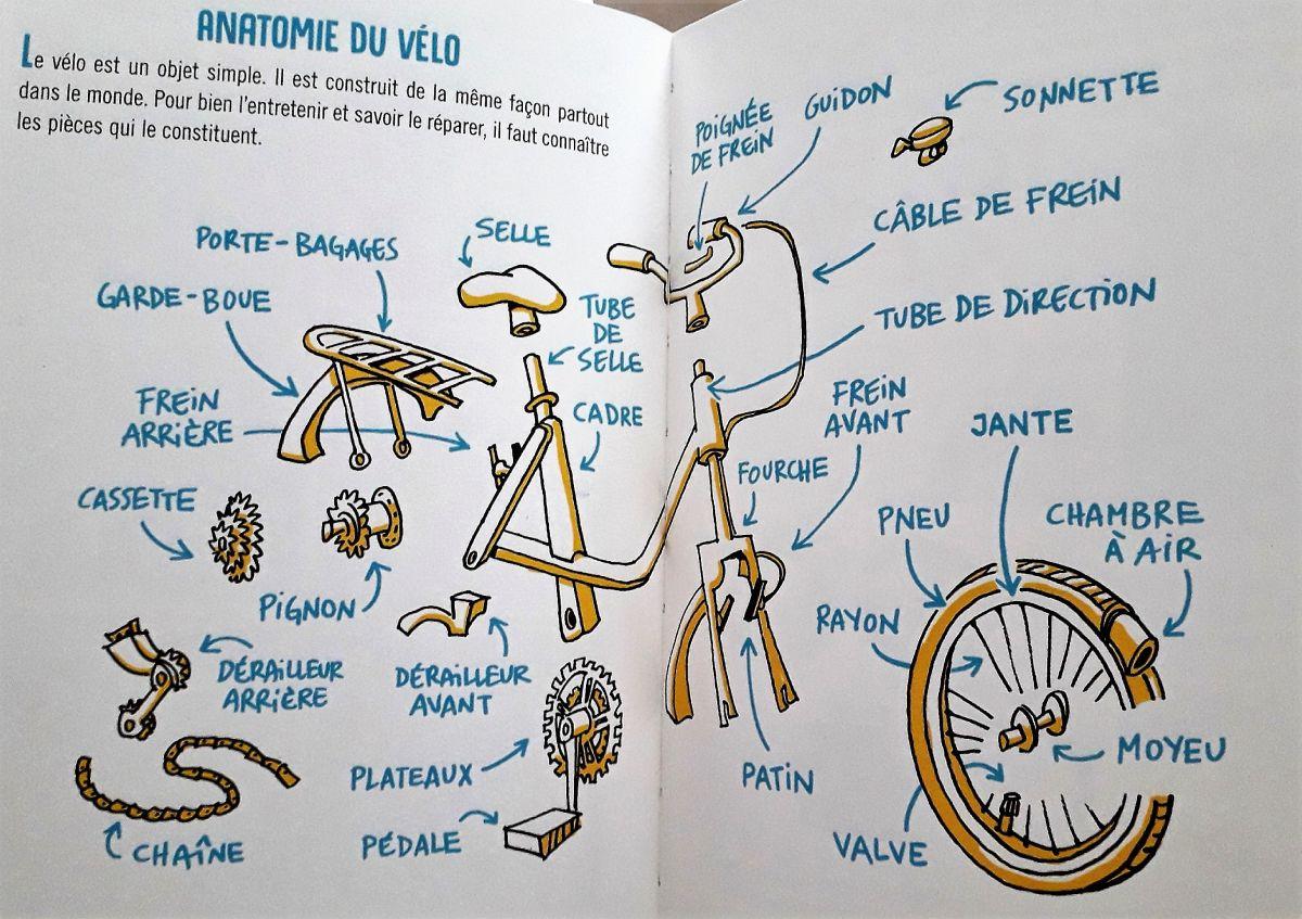 Mission vélo anatomie du vélo