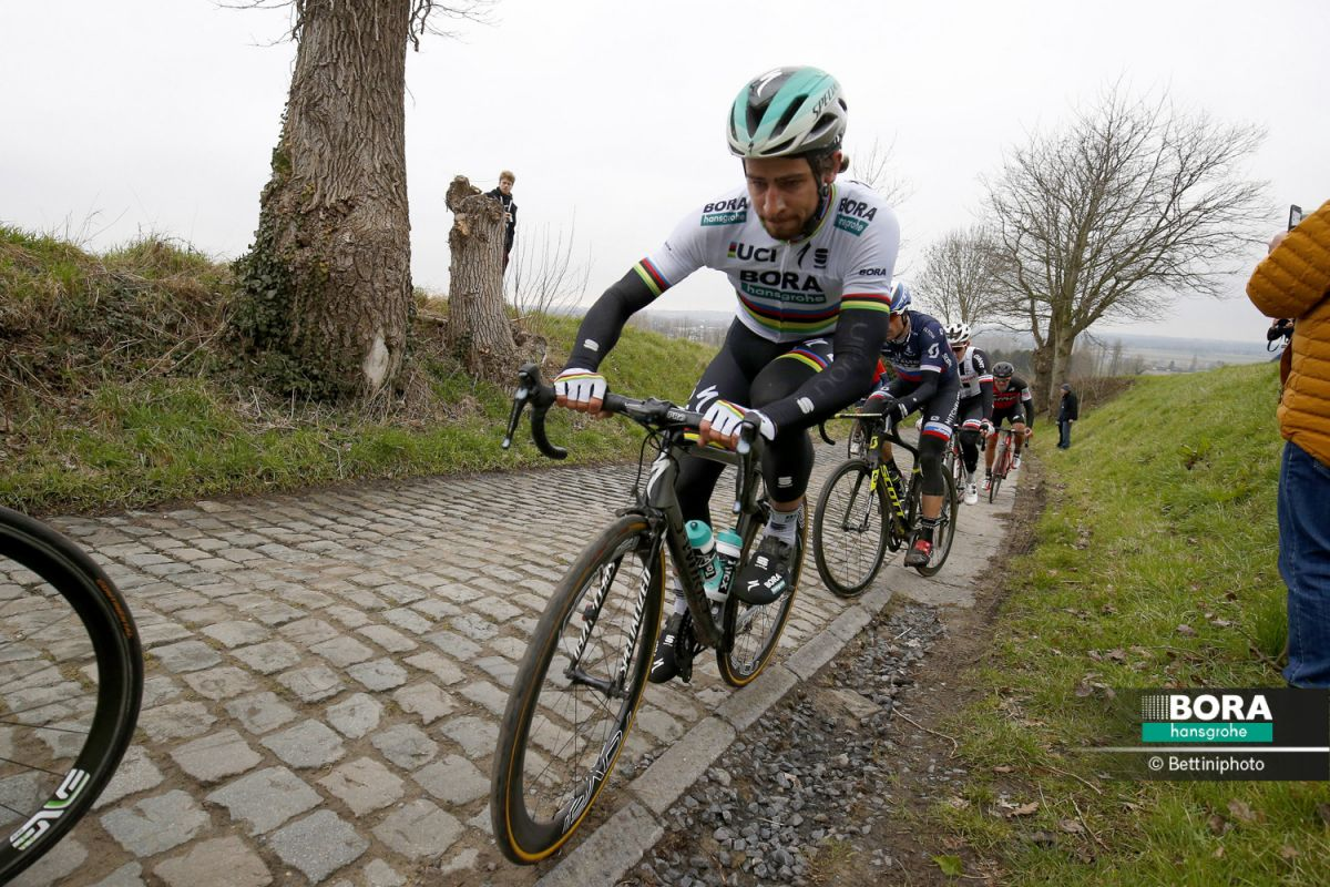 Peter Sagan sur le GP E3