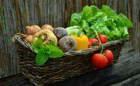 Récupération musculaire : les aliments conseillés avant de remonter sur le vélo